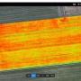 マルチスペクトルカメラドローンの圃場解析テスト